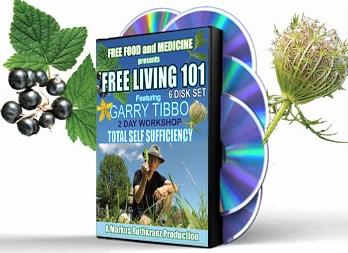 Free living 101 markus rothkranz pdf free